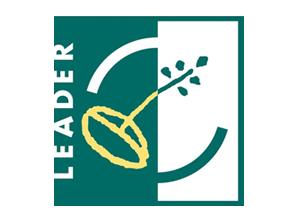 Leader Austria